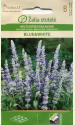 """Mealy sage """"Blue & White"""""""