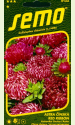 """Aster """"Ribbon red"""""""