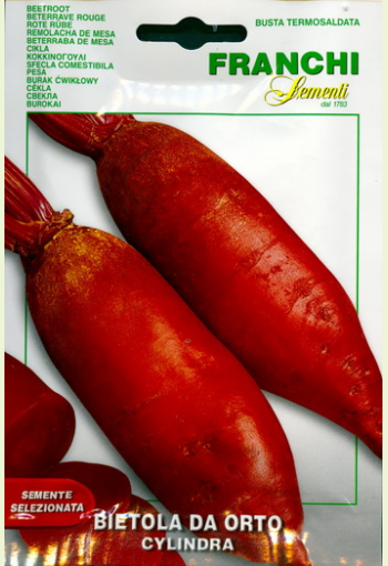 """Red beet """"Cylindra"""""""