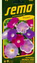 """Morning glory """"Imperial"""" (mix)"""