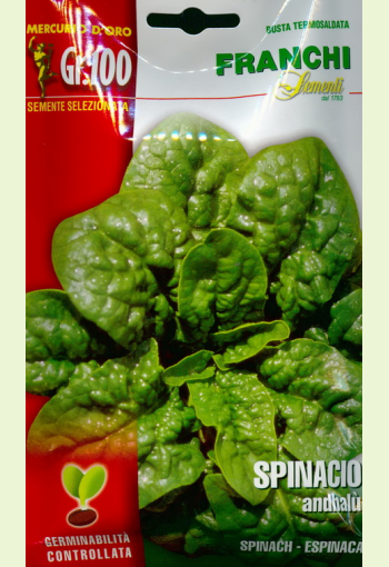 """Spinach """"Andhalu"""""""