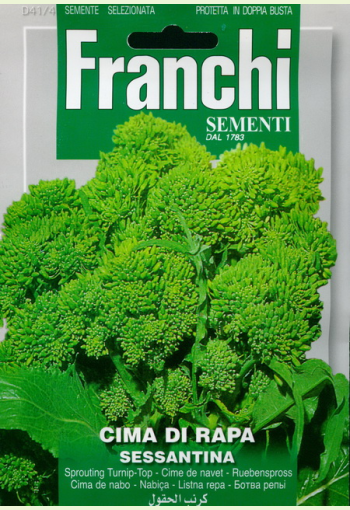 """Sprouting broccoli """"Sessantina"""""""