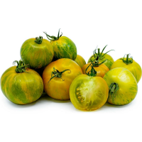 Exotic and exclusive varieties of tomato