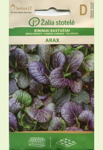 """Leaf Chinese Cabbage """"Arax"""""""